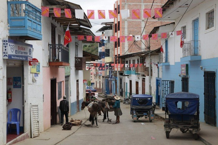 Pedro Castillo cuenta con el apoyo de áreas rurales y docentes en Perú.  Foto: EFE