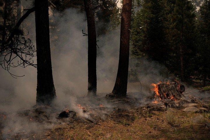 Decenas de incendios siguen activos en los estados de California, Oregón y Nevada, en el oeste de EE. UU. Foto: REUTERS