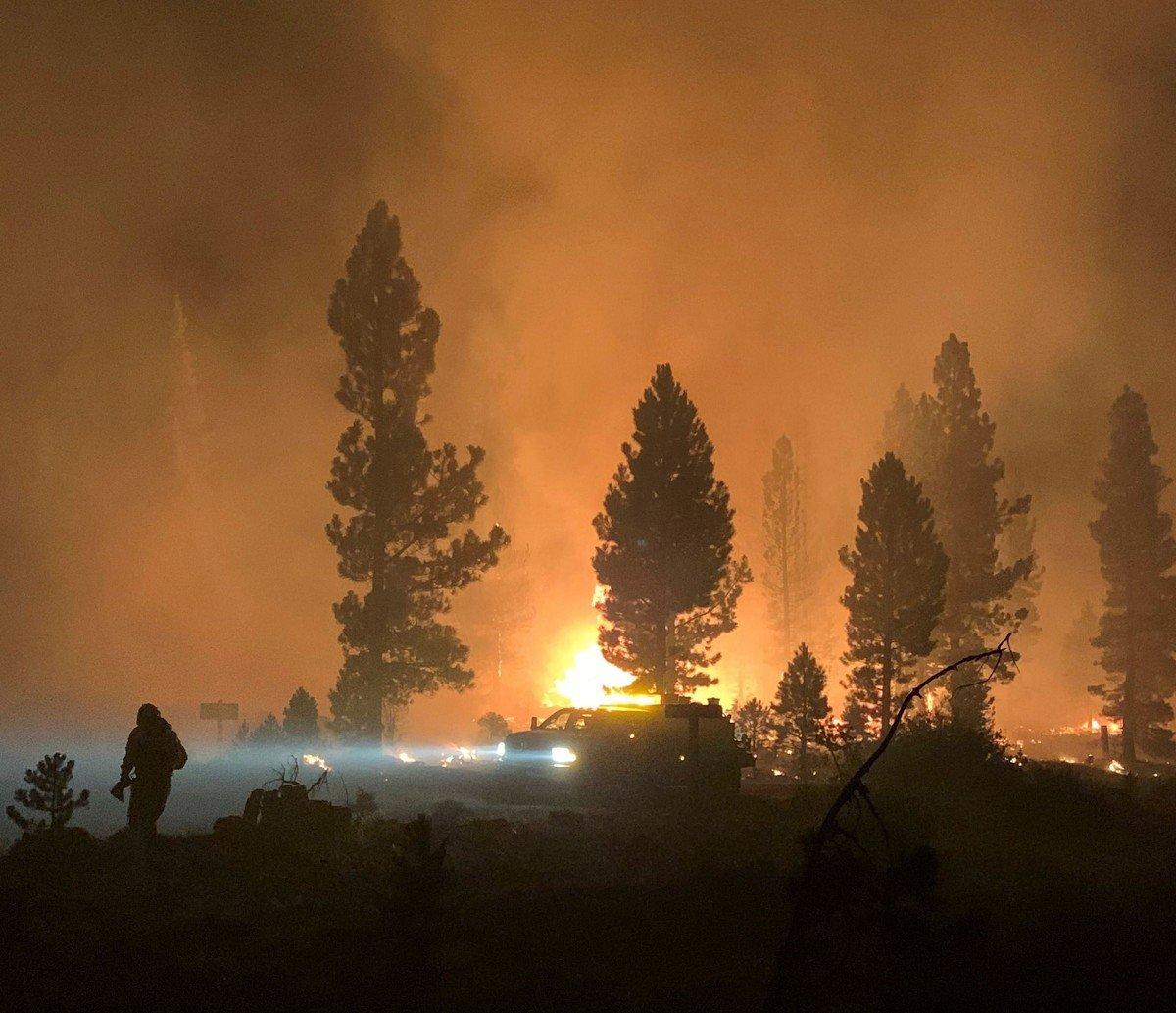 Calor, sequía y vientos: el cóctel que desató los incendios forestales en Estados Unidos.  Foto: AFP